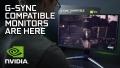 Как работает G-Sync compatible