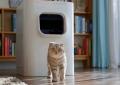 LavvieBot: умный лоток для кошек